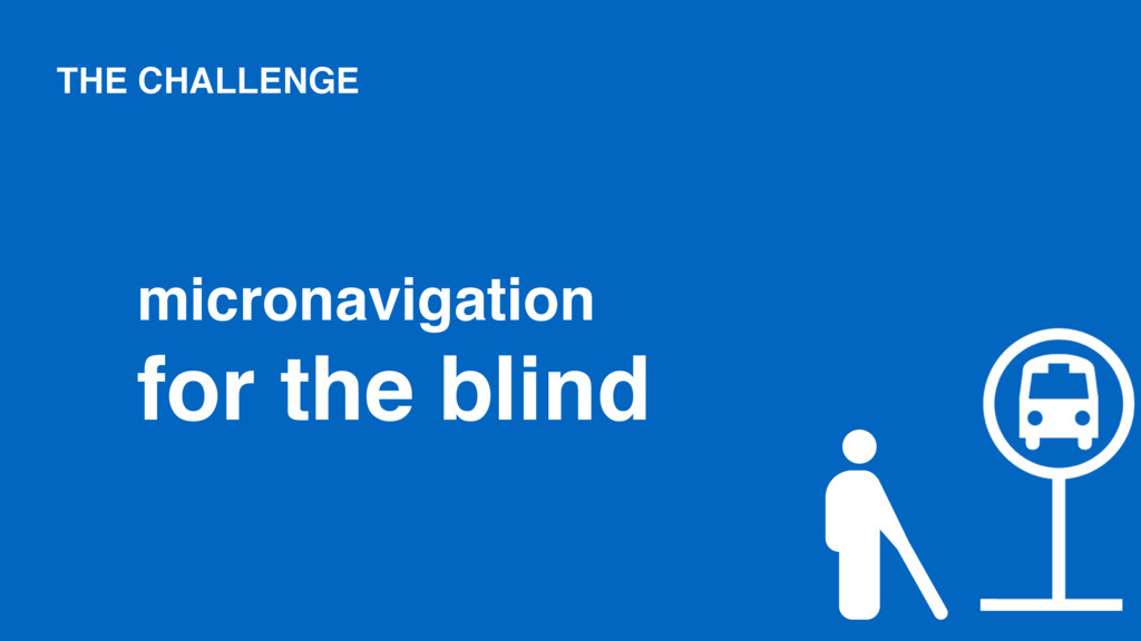 THE CHALLENGE micronavigation for the blind
