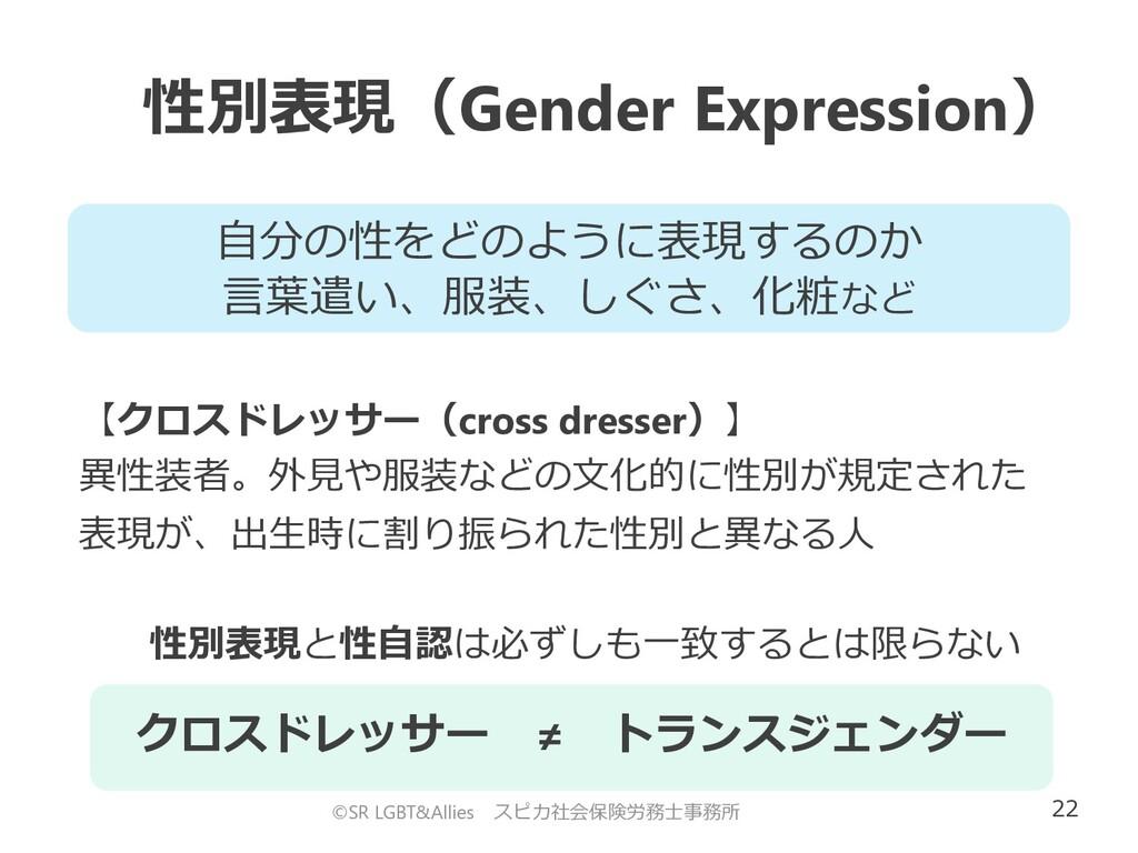 22 性別表現(Gender Expression) ©SR LGBT&Allies スピカ社...