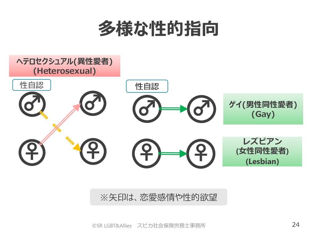 24 ♀ ♂ 性自認 ♀ ♂ ヘテロセクシュアル(異性愛者) (Heterosexual) 多...