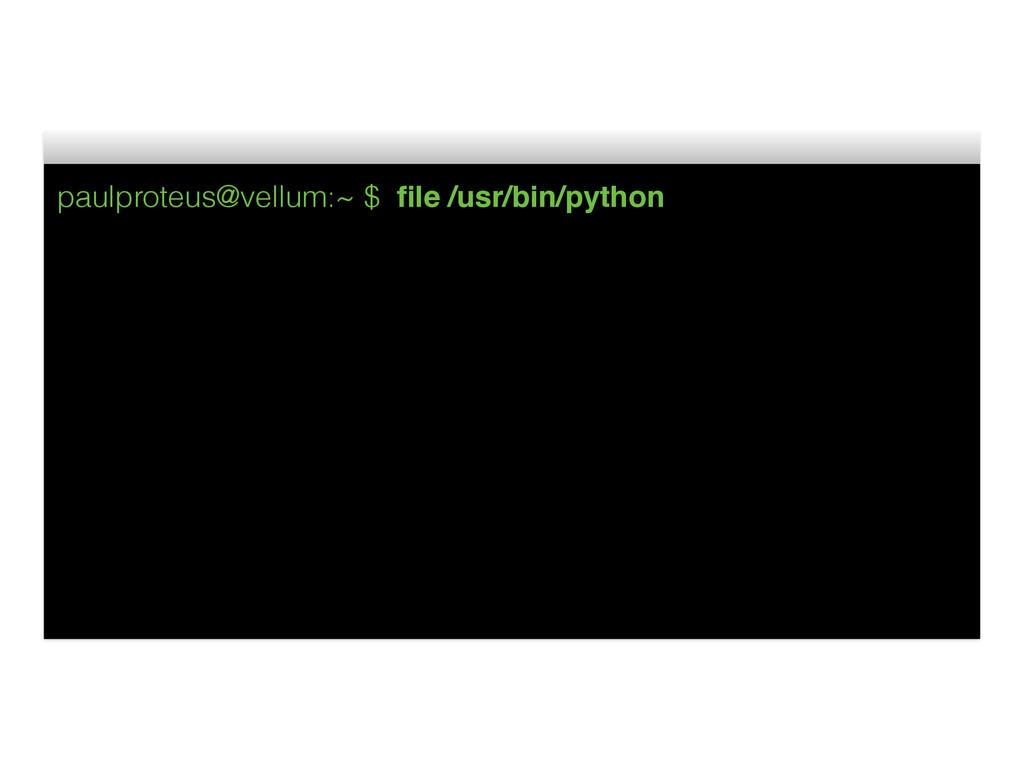 paulproteus@vellum:~ $ file /usr/bin/python