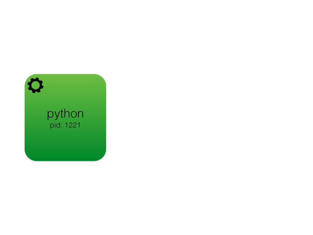 python pid: 1221