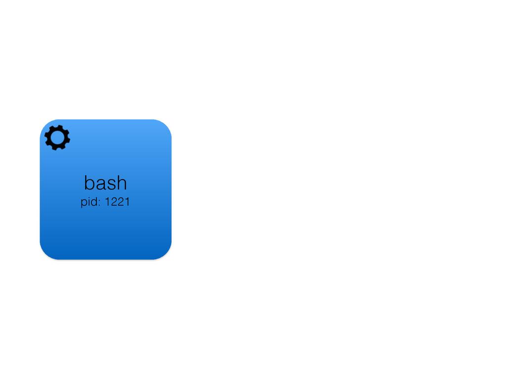 bash pid: 1221