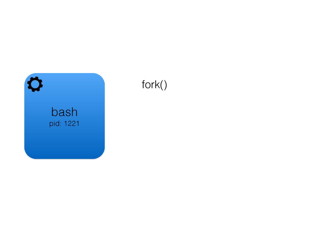 bash pid: 1221 fork()