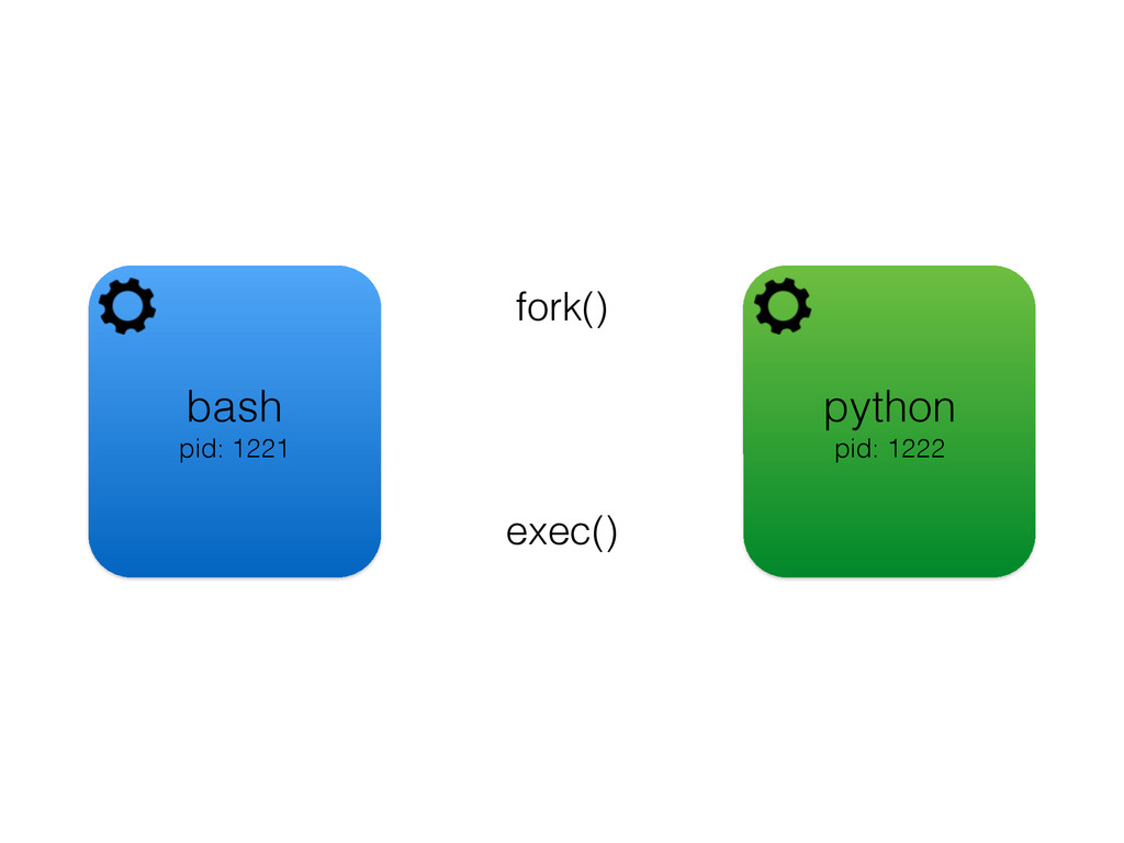 bash pid: 1221 fork() python pid: 1222 exec()
