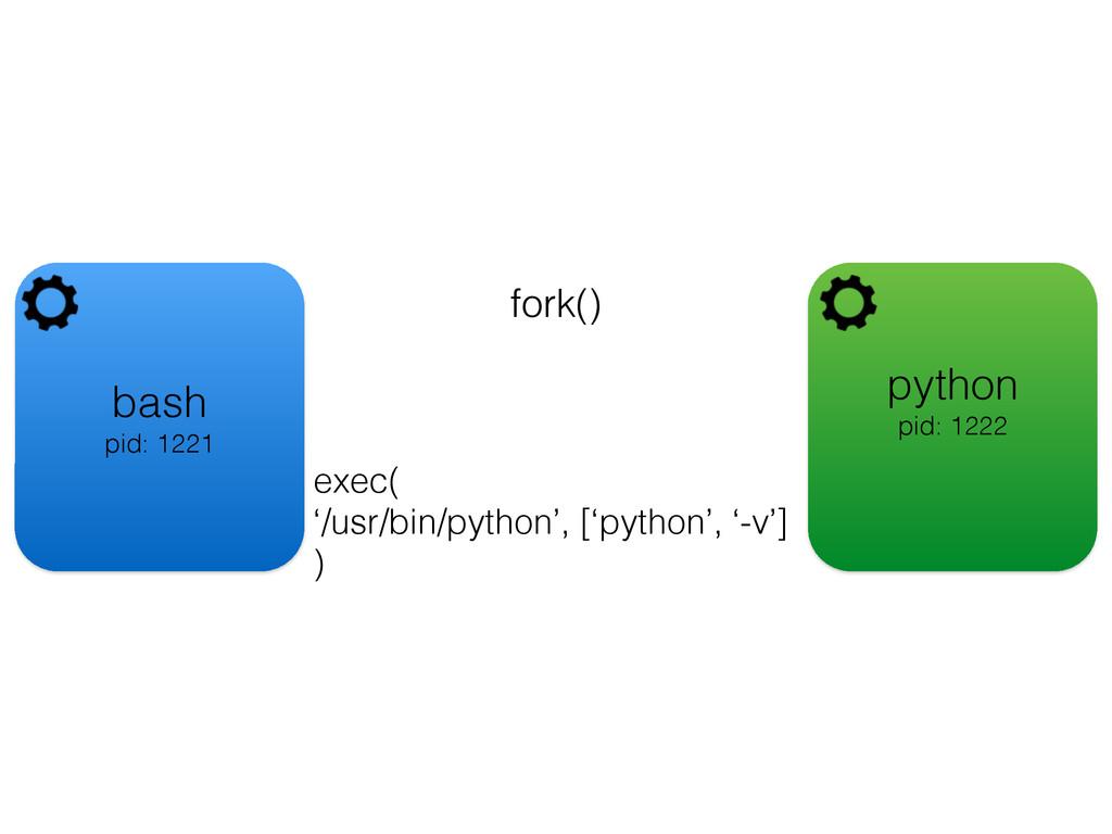 bash pid: 1221 fork() python pid: 1222 exec( '/...