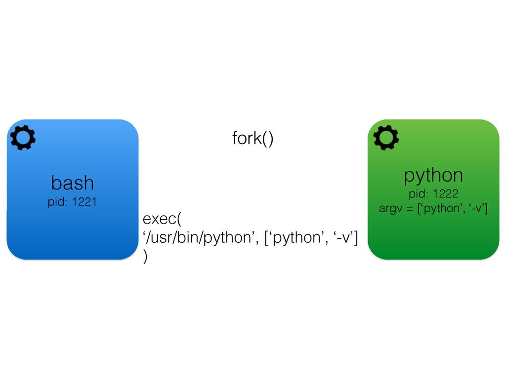 bash pid: 1221 fork() python pid: 1222 argv = [...