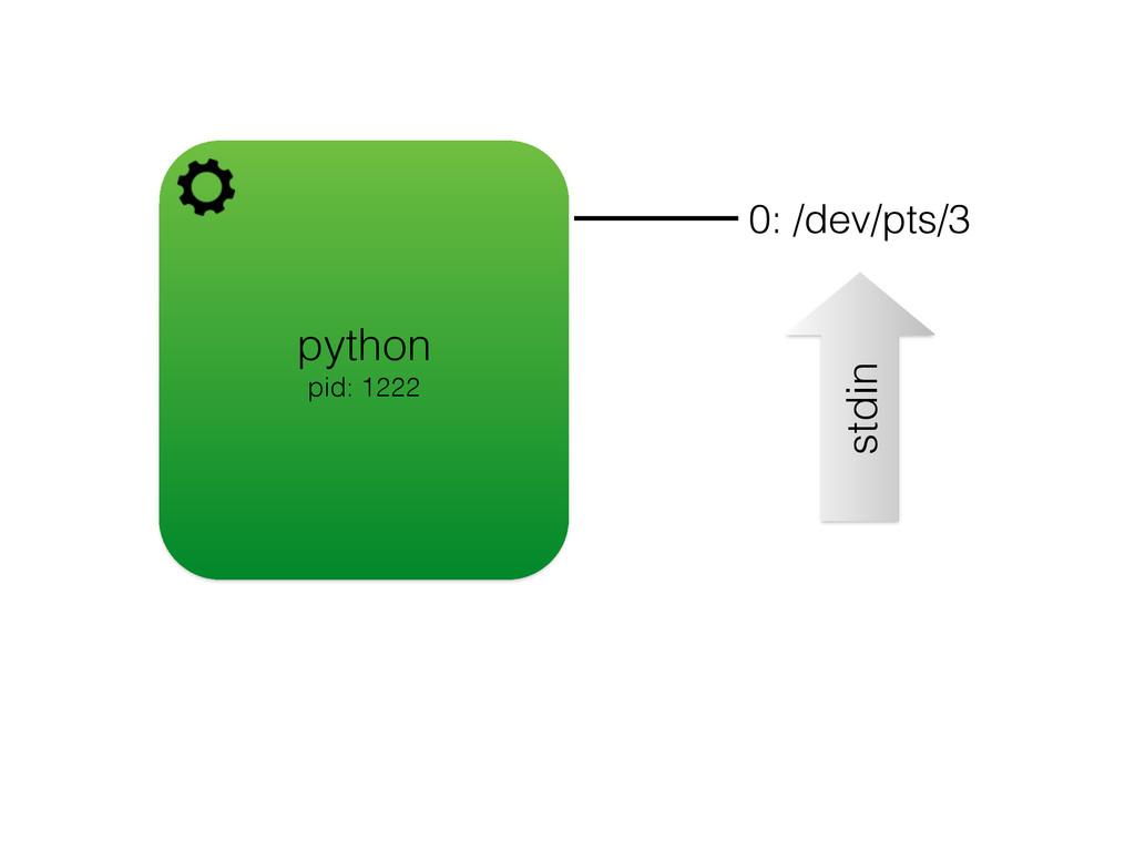 python pid: 1222 0: /dev/pts/3 stdin