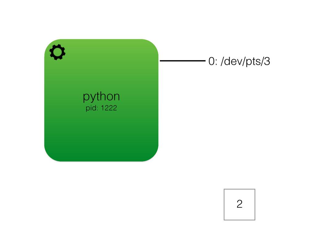 python pid: 1222 0: /dev/pts/3 2