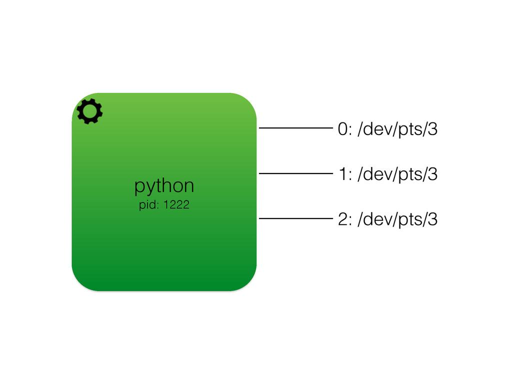 python pid: 1222 0: /dev/pts/3 1: /dev/pts/3 2:...
