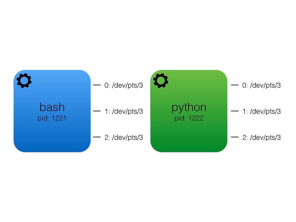 bash pid: 1221 python pid: 1222 0: /dev/pts/3 1...