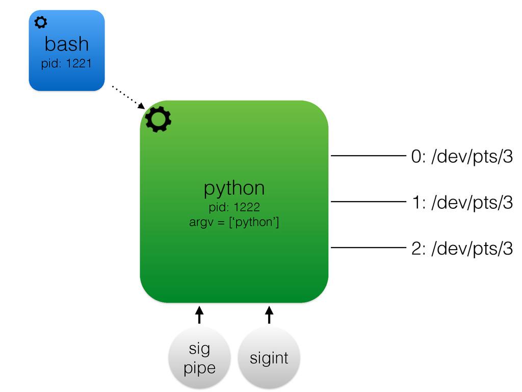 python pid: 1222 argv = ['python'] sigint sig p...
