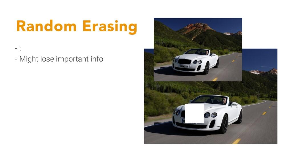 Random Erasing - : - Might lose important info