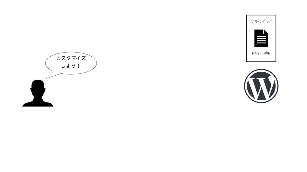 ΧελϚΠζ ͠Α͏ʂ plugin.php ϓϥΠϯC