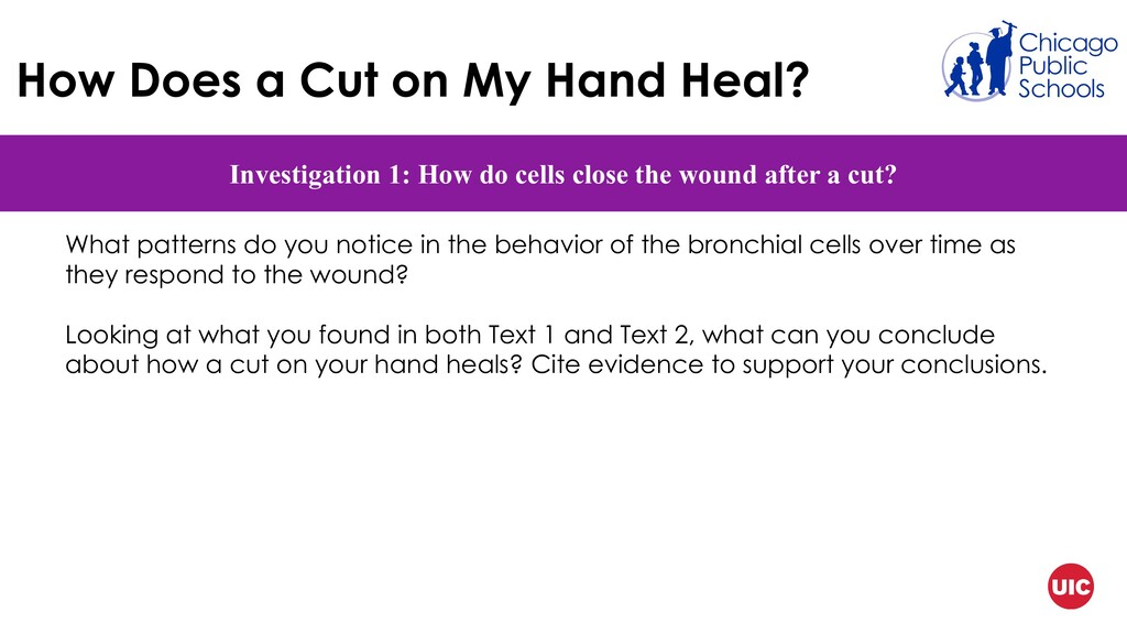 How Does a Cut on My Hand Heal? Investigation 1...