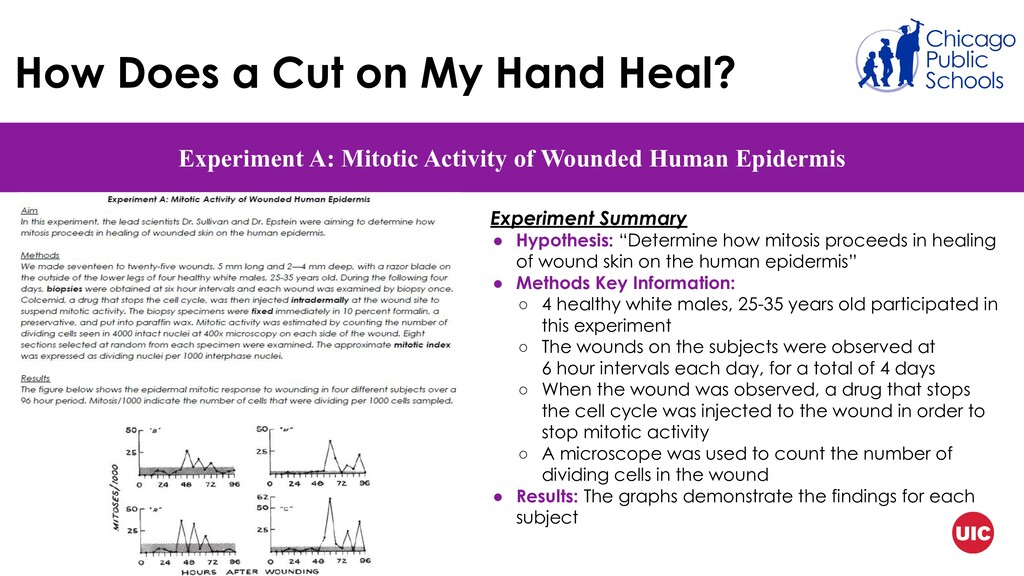 How Does a Cut on My Hand Heal? Experiment A: M...