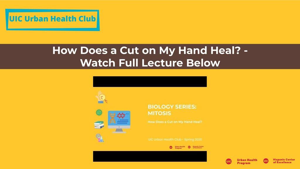 UIC Urban Health Club How Does a Cut on My Hand...