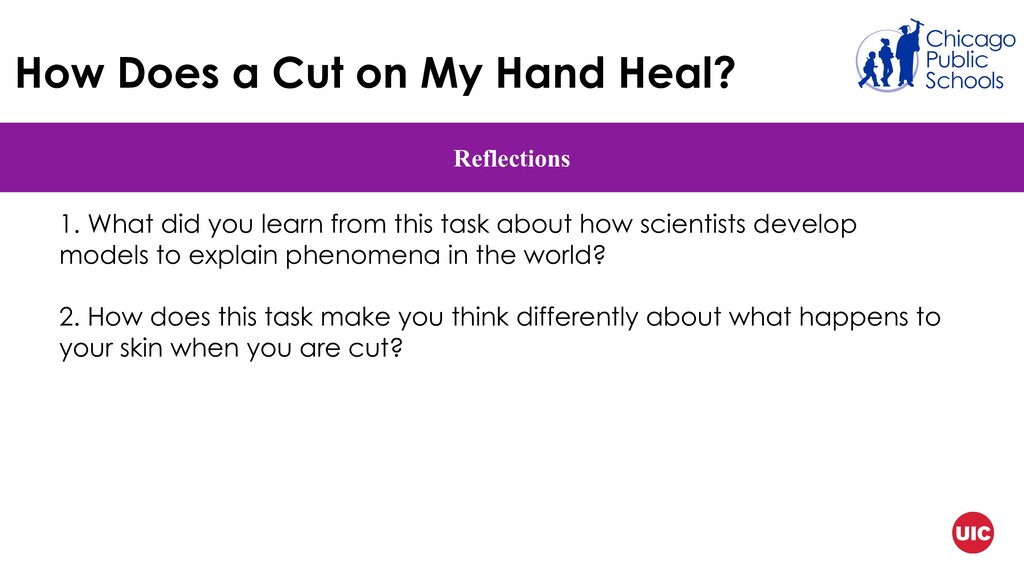 How Does a Cut on My Hand Heal? Reflections 1. ...