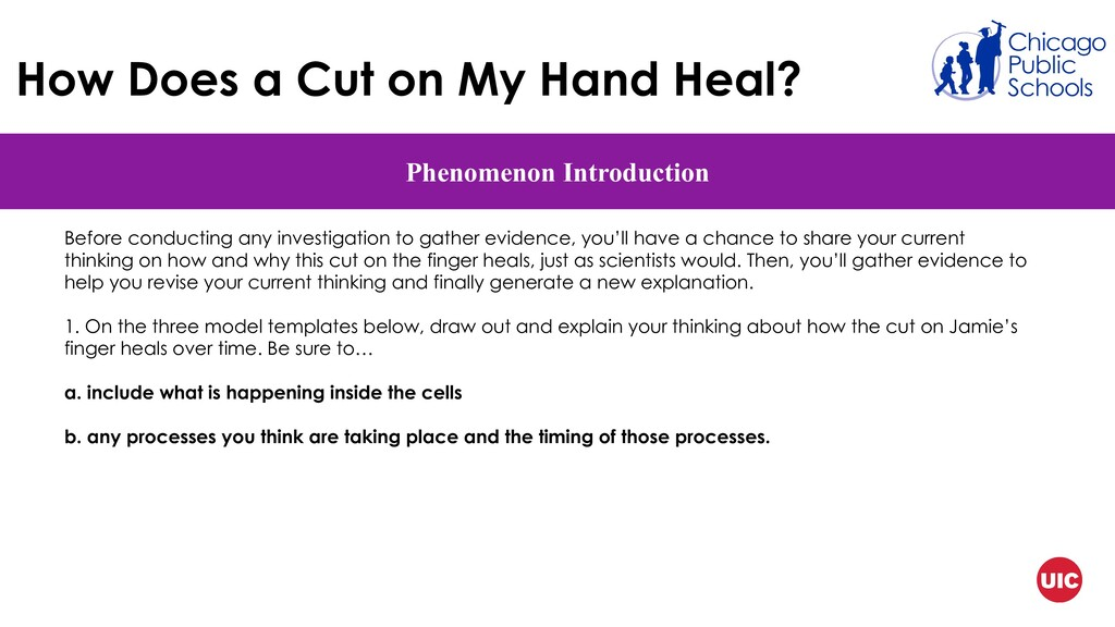 How Does a Cut on My Hand Heal? Phenomenon Intr...