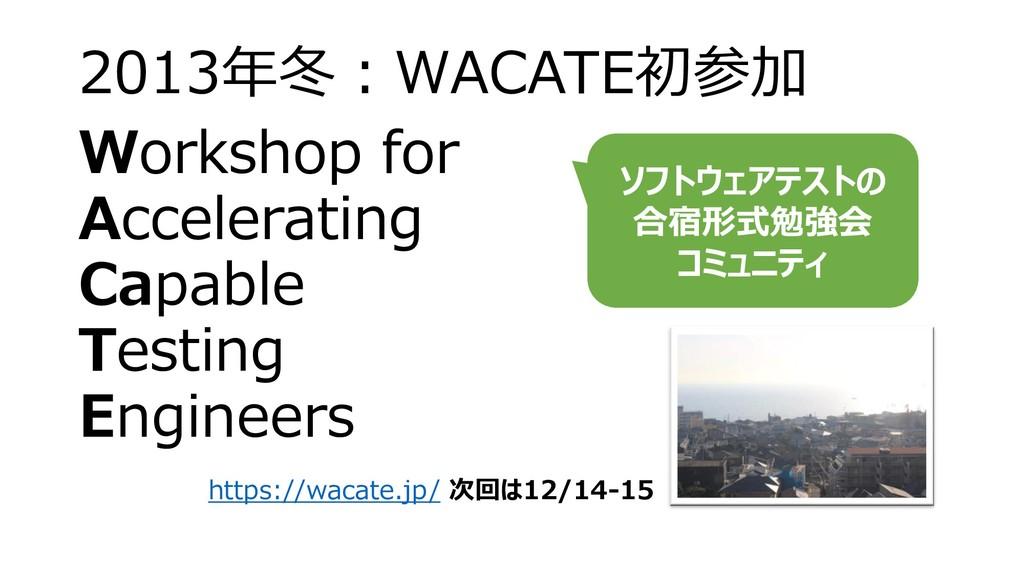 2013年冬:WACATE初参加 Workshop for Accelerating Capa...