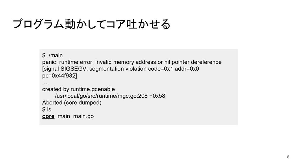 プログラム動かしてコア吐かせる $ ./main panic: runtime error: ...