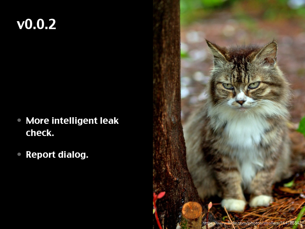 v0.0.2 • More intelligent leak check. • Report ...
