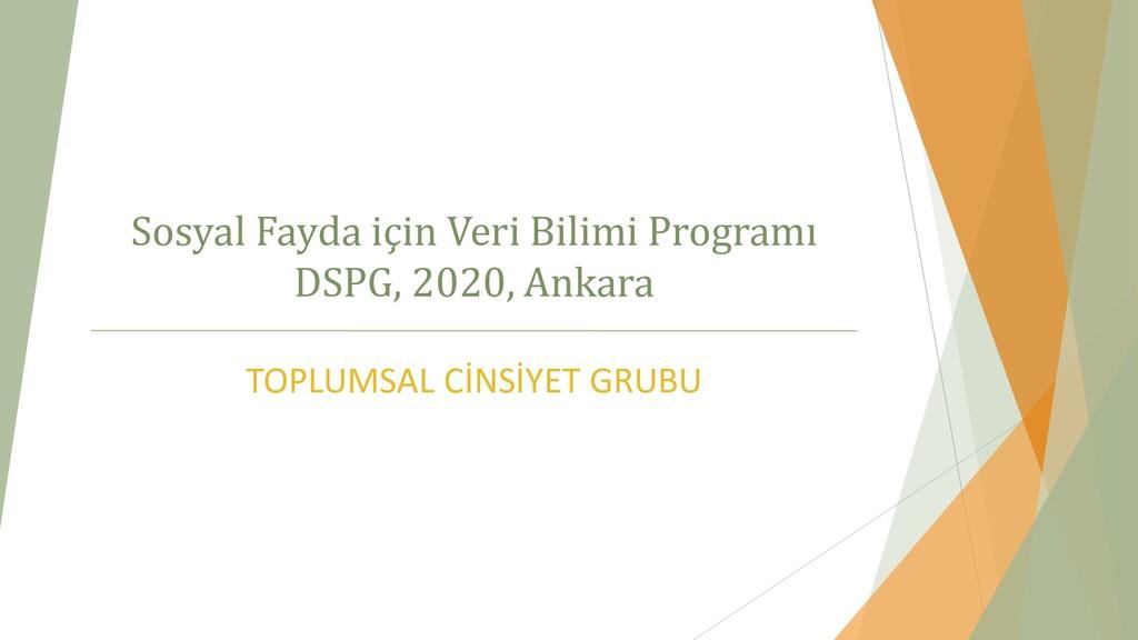 Sosyal Fayda için Veri Bilimi Programı DSPG, 20...