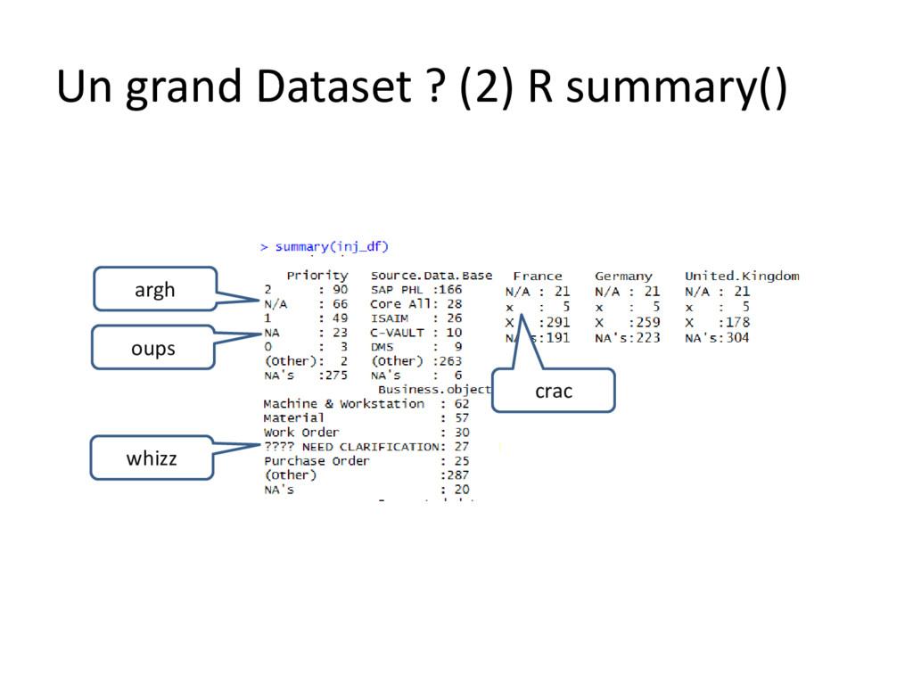 Un grand Dataset ? (2) R summary() argh oups wh...
