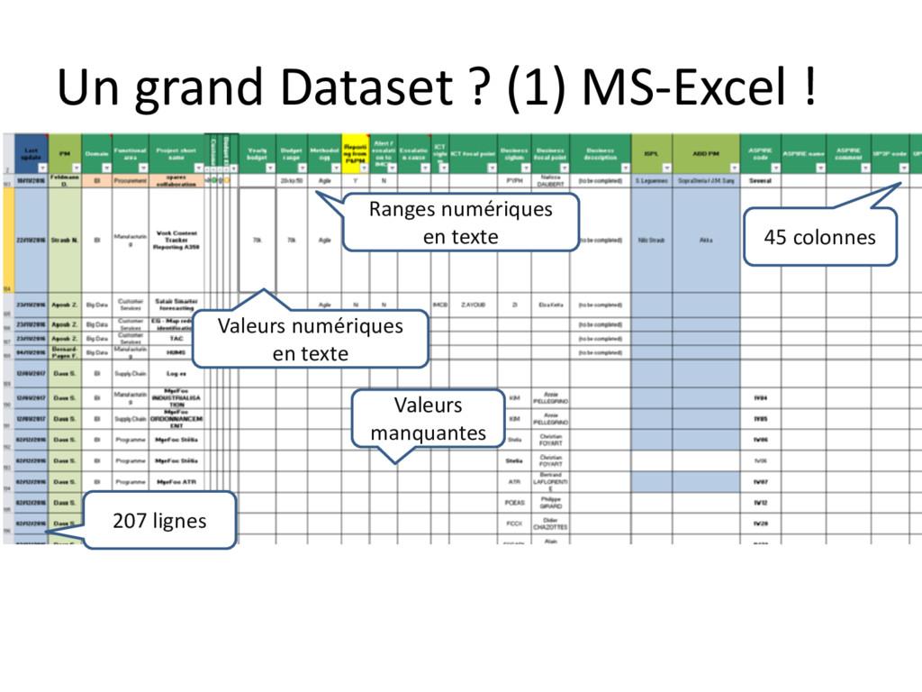 Un grand Dataset ? (1) MS-Excel ! Valeurs manqu...