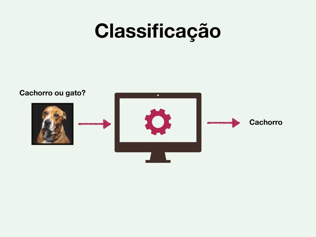 Classificação Cachorro ou gato? Cachorro
