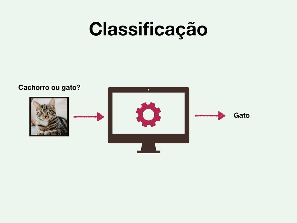 Classificação Gato Cachorro ou gato?