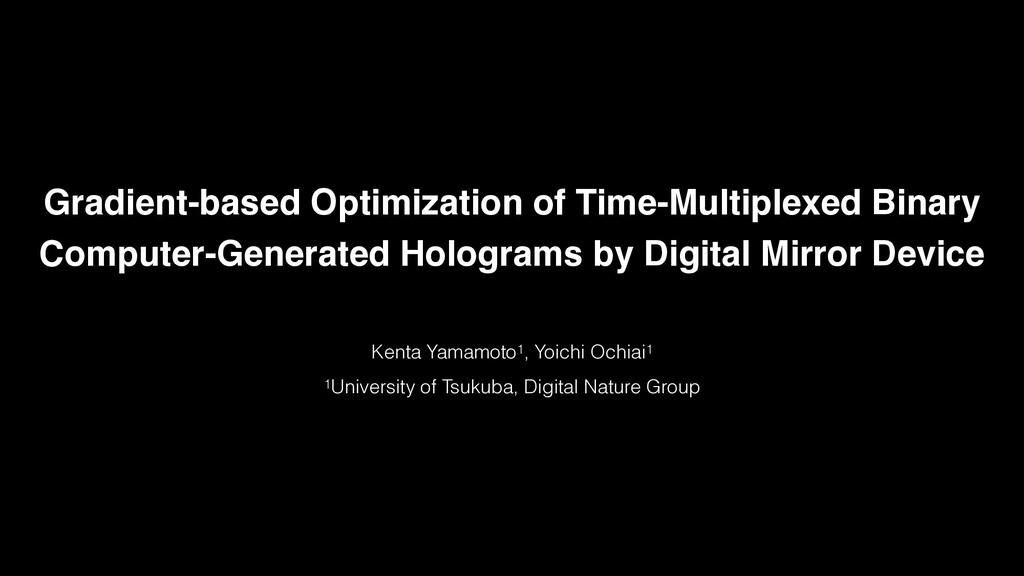 Gradient-based Optimization of Time-Multiplexed...