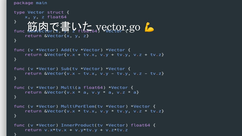 筋肉で書いた vector.go