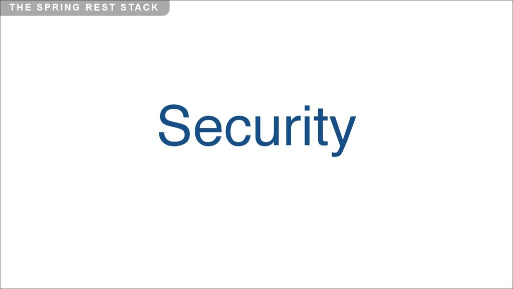 T H E S P R I N G R E S T S TA C K Security
