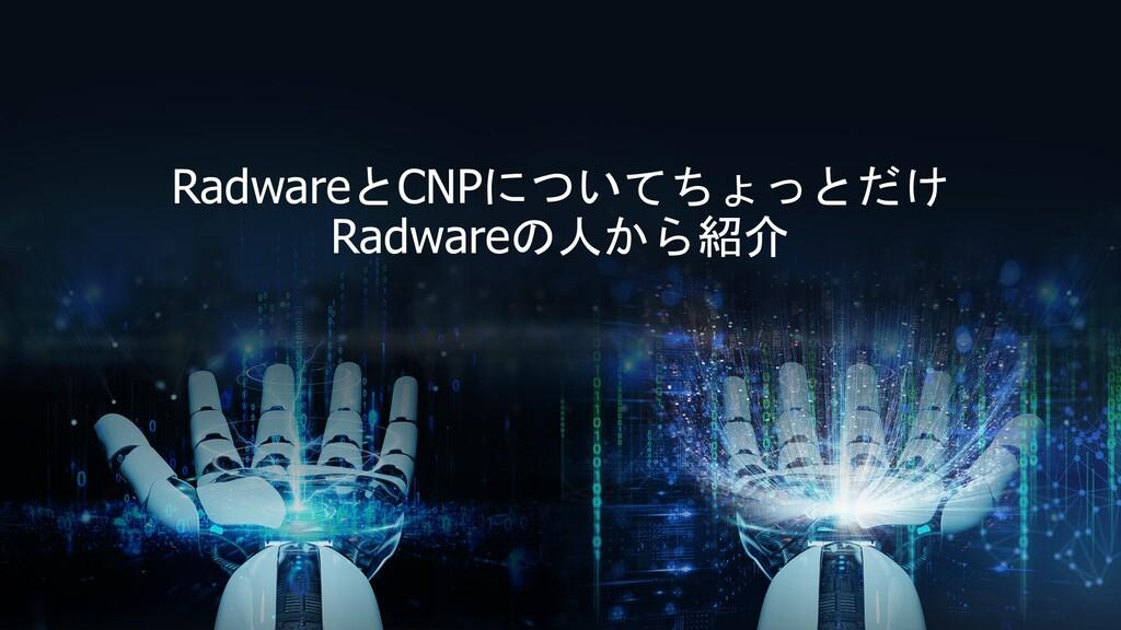 RadwareとCNPについてちょっとだけ Radwareの人から紹介