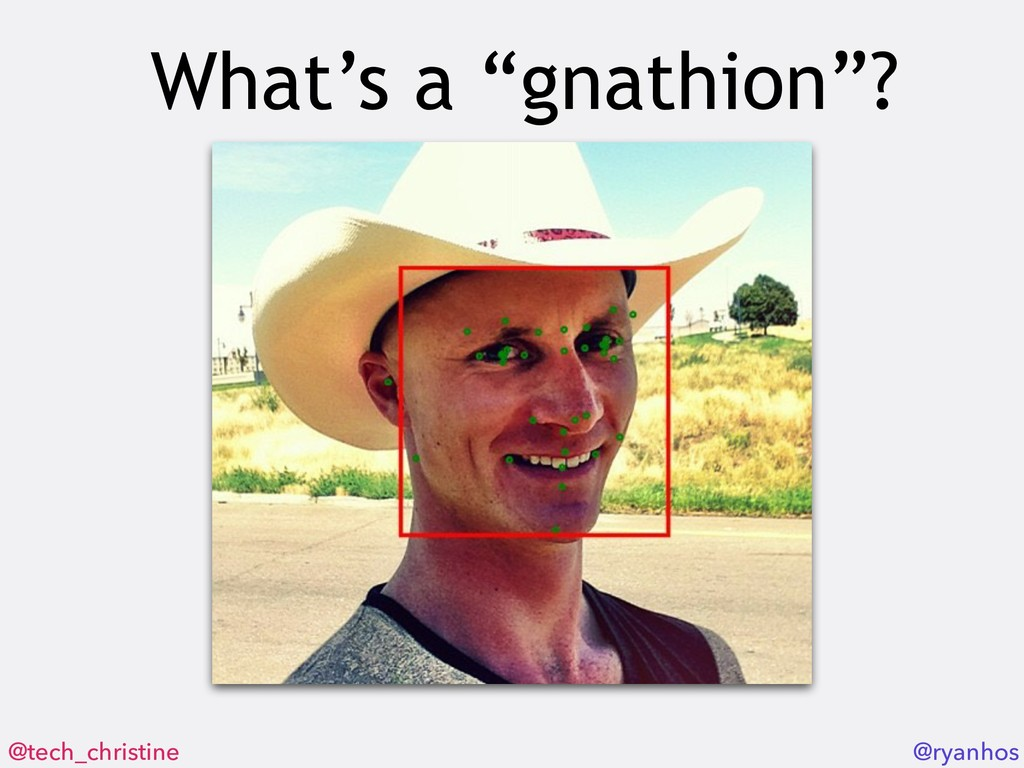 "@tech_christine @ryanhos What's a ""gnathion""?"