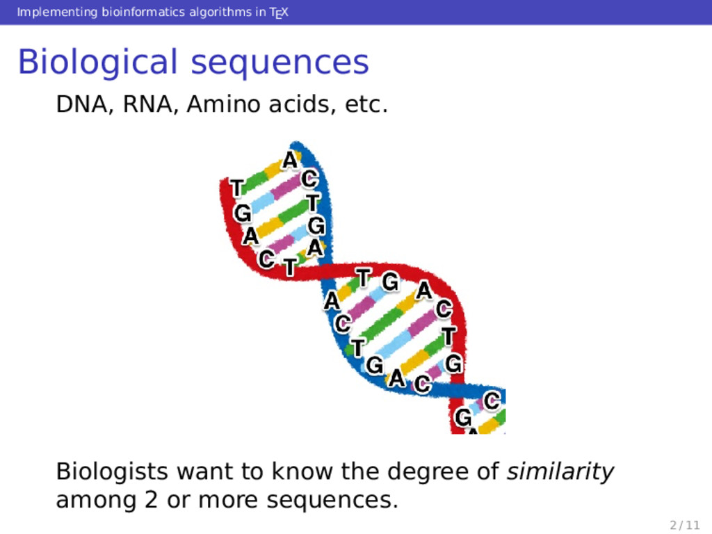 Implementing bioinformatics algorithms in TEX B...