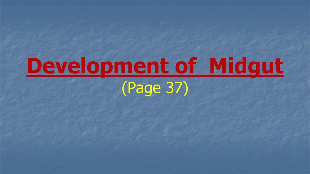 Development of Midgut (Page 37)