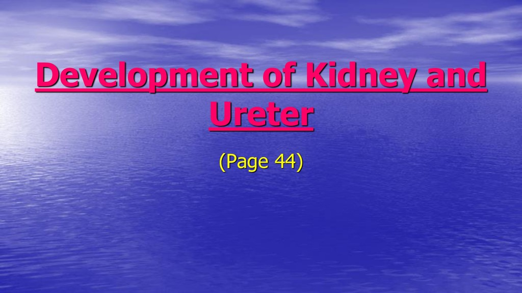 Development of Kidney and Ureter (Page 44)
