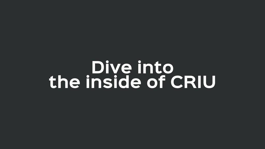 Dive into  the inside of CRIU