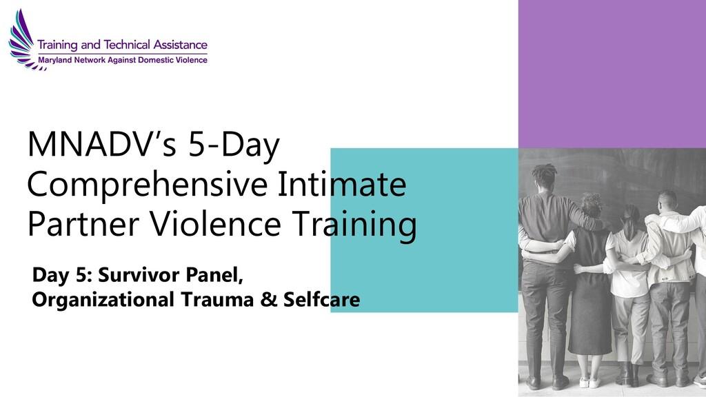 MNADV's 5-Day Comprehensive Intimate Partner Vi...