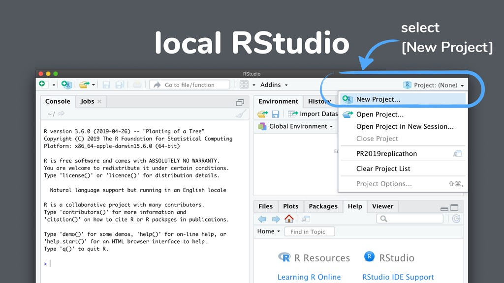 local RStudio select [New Project]