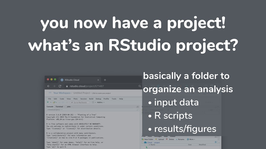 you now have a project! what's an RStudio proje...