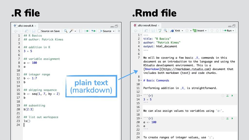 .R file .Rmd file plain text (markdown)