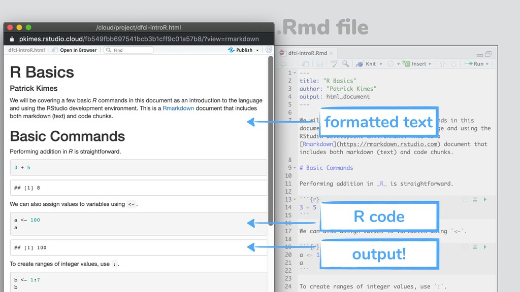 .Rmd file formatted text output! R code