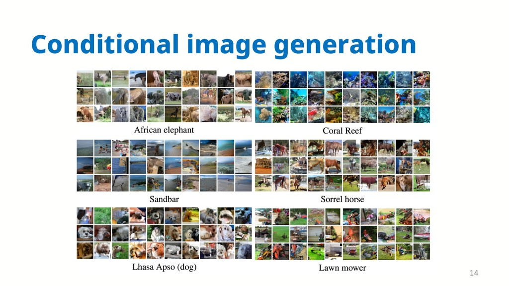 Conditional image generation 14