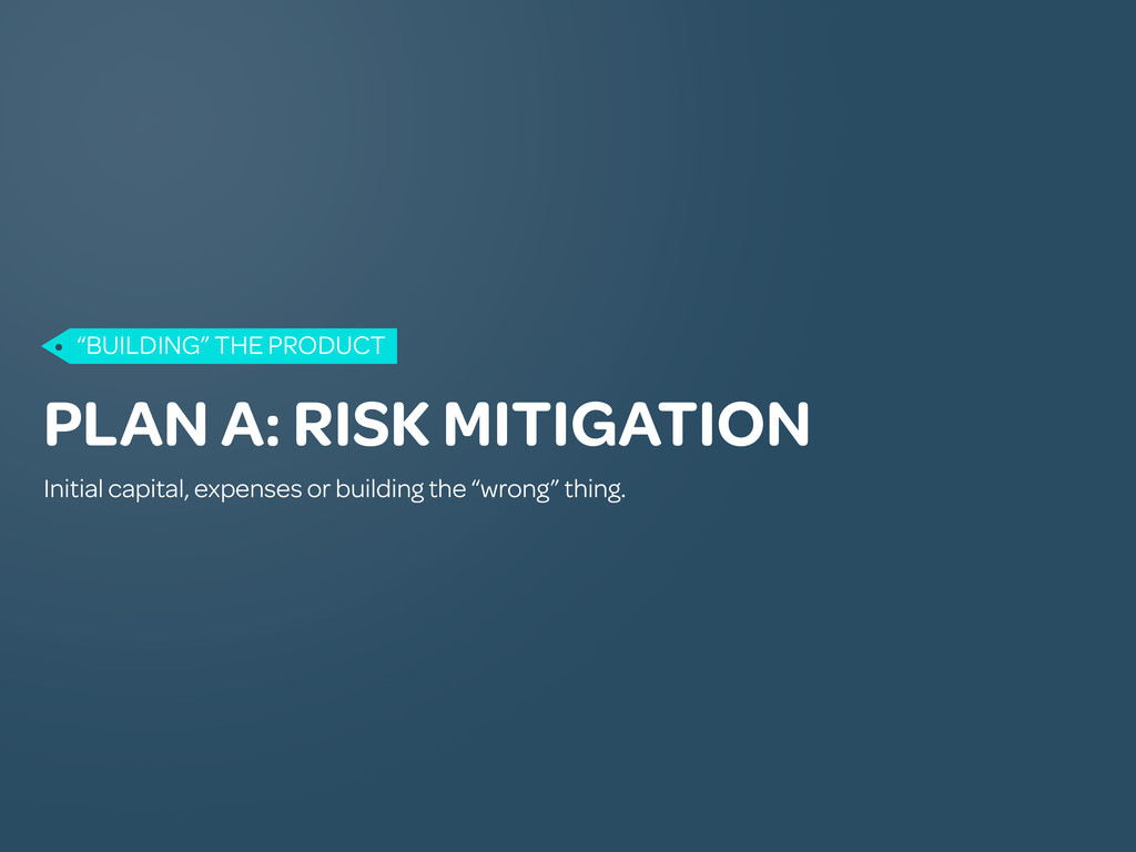 PLAN A: RISK MITIGATION Initial capital, expens...