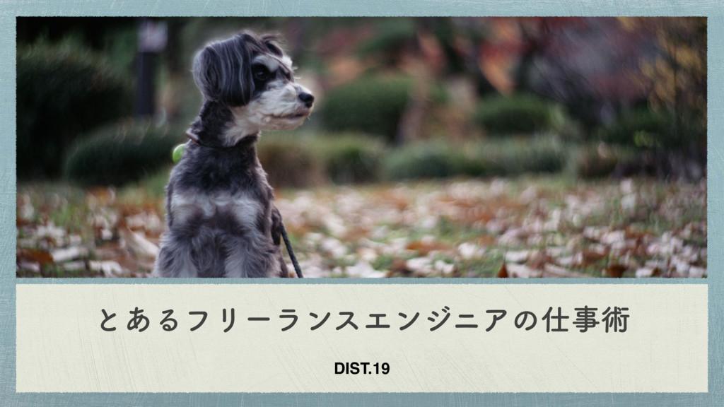 ͱ͋ΔϑϦʔϥϯεΤϯδχΞͷज़ DIST.19
