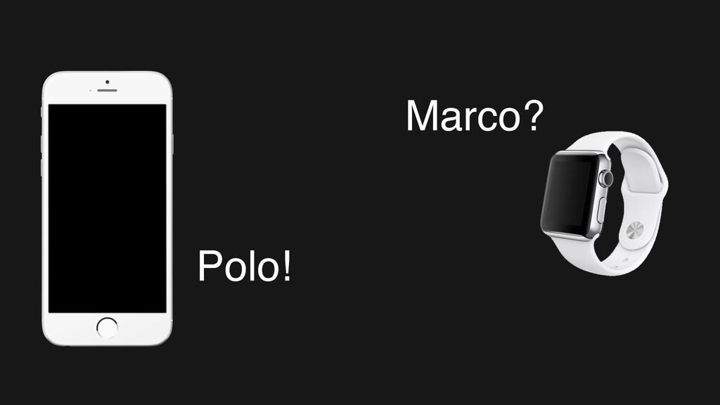 Polo! Marco?