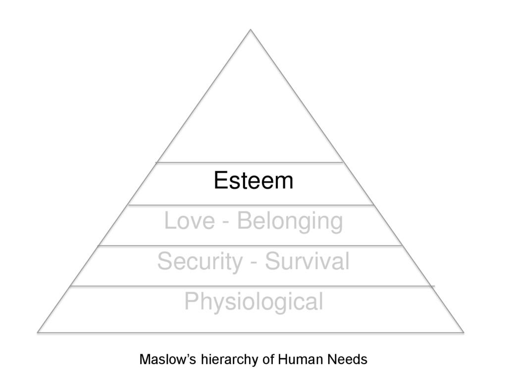 Esteem Love - Belonging Security - Survival Phy...