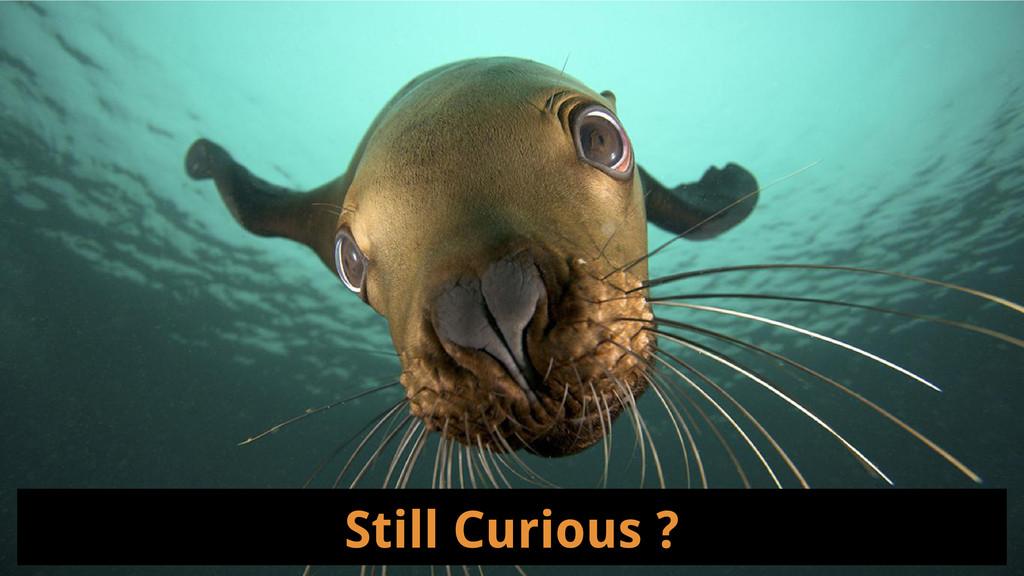 Still Curious ?